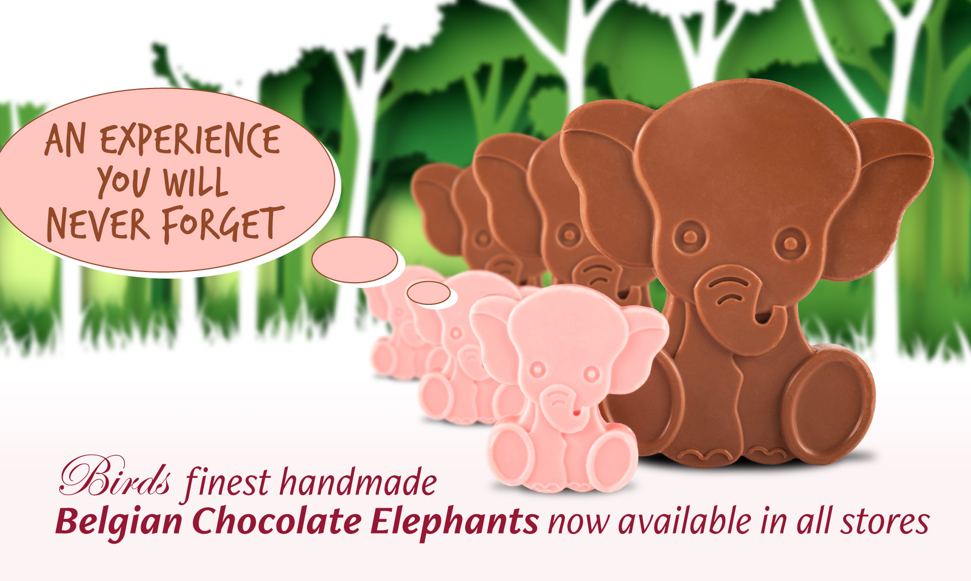 Birds finest handmade Belgian Chocolate Elephants now available in all stores