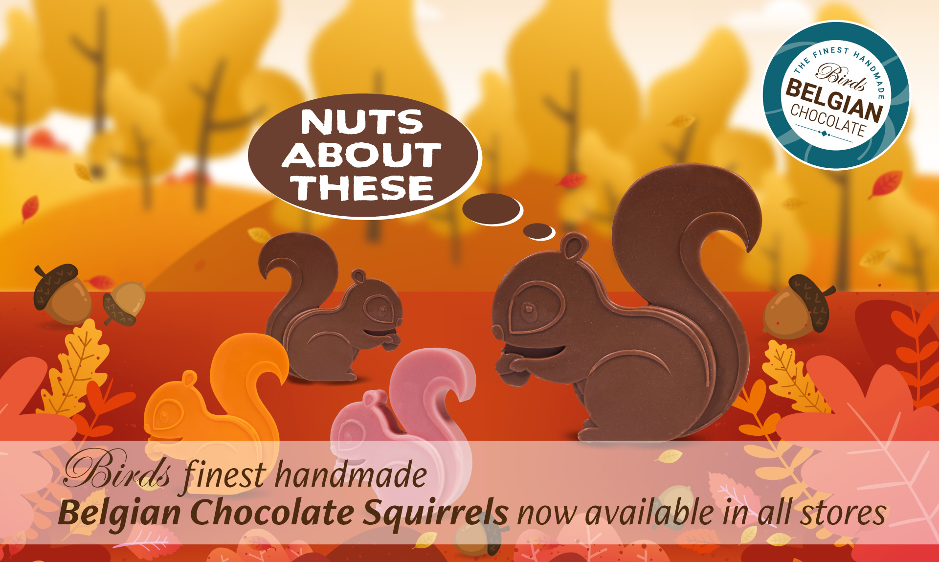 Birds finest handmade belgian chocolate squirrels now available in all stores